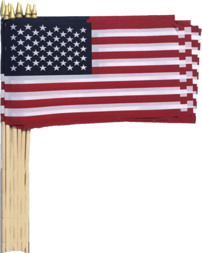SO103 12 x 18 American Flag