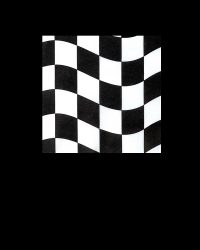 Checkered Flag Beverage Napkins